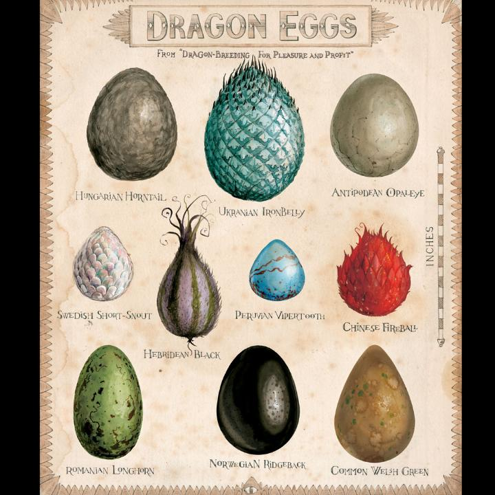 Dragon Eggs, from 'Harry Potter and the Philosopher's Stone'
