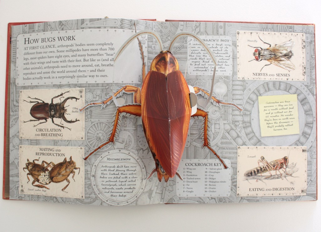 "A spread from the recently published ""Bugs"" book"